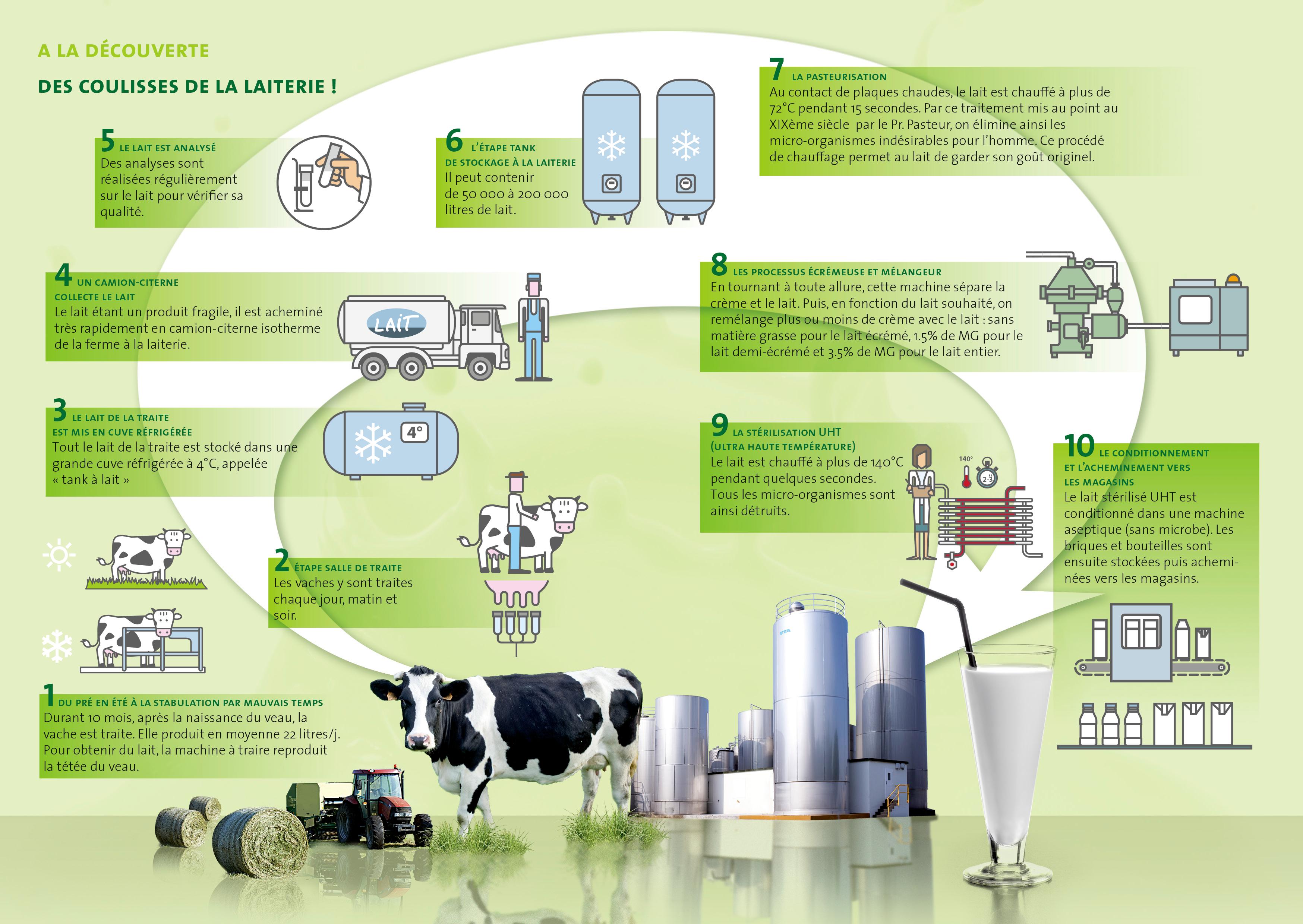 Le parcours du lait